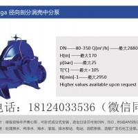 KSB凯士比Omega系列轴向剖分涡壳泵-荣泽节能