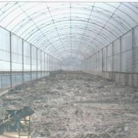煜林枫污泥太阳能烘干系统