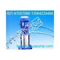 供应125GDL100-20×4全自动楼宇泵