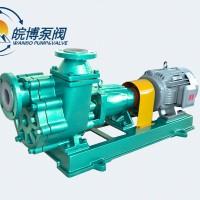 50FZB-30L氟塑料自吸泵