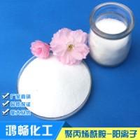 东洲阳离子聚丙烯酰胺净水剂 絮凝剂 污水处理剂货源源头发货
