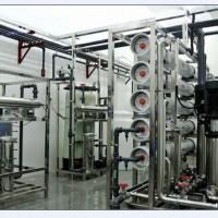 供应双级反渗透水处理设备 啤酒厂反渗透纯水制取设备 食品水处理