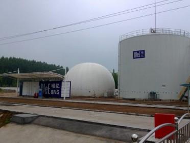 生物燃气大/中/小型储气柜 沼气储气柜