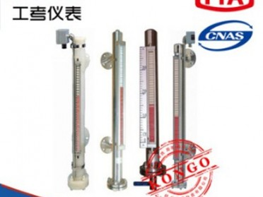 GPM-C100防腐型磁翻板液位计