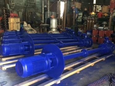 温州石一泵阀YW单管液下排污泵