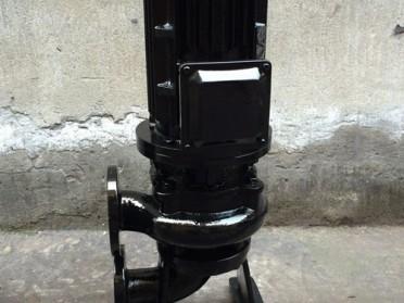 温州石一泵阀LW立式排污泵
