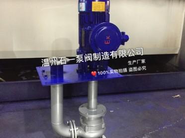 温州石一泵阀YWB防爆液下排污泵