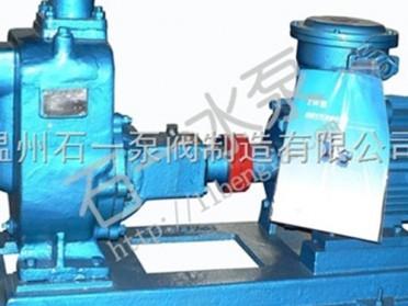 温州石一泵阀ZW自吸无堵塞排污泵