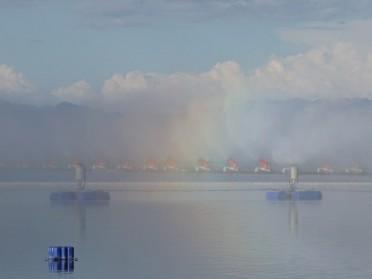 西部地区煤化工浓盐水蒸发设备 多效强制循环机械雾化蒸发器 现货供应