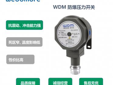 锅炉配套WDM机械式压力开关/WDM防爆压力开关