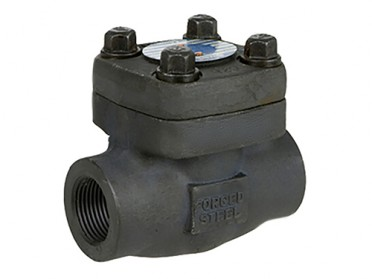 1 Inch Forged Swing Check Valve, A105N, 800 LB, Threaded