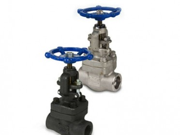 API 602 Threaded Forged Globe Valve, 1/4 Inch, CL800, Rising Stem