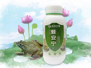 乾界生物牛蛙养殖抗抑制、裂解蛙类致病菌
