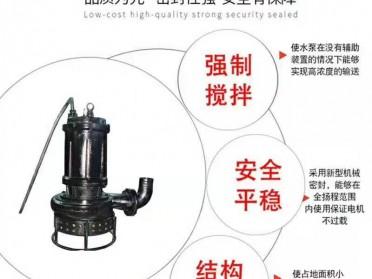 制药厂沉渣池渣浆泵 热电厂沉砂池搅拌泥砂泵 CSQ型潜水渣浆泵