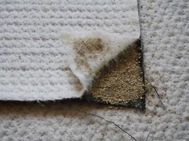 天然膨润土防水毯