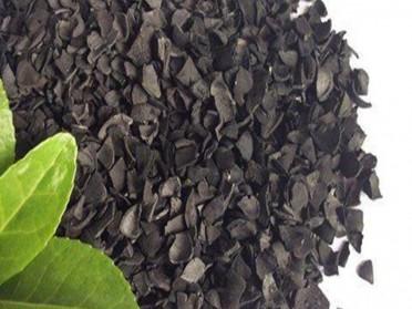 食品级活性炭滤水家用食用过滤净水器滤芯净化井水处理颗粒果壳炭